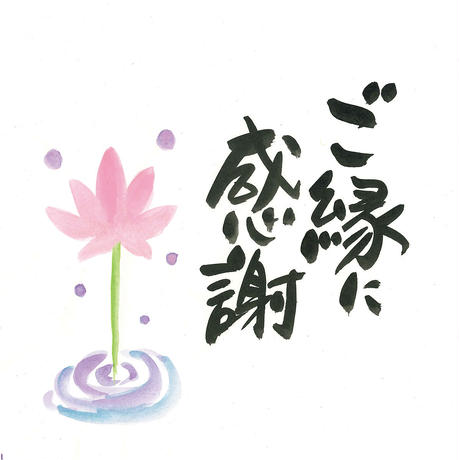 [04]したくや縁  不空の蓮  葉色葉光(ようしきようこう)濃色 ギフトパッケージ