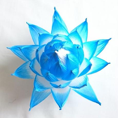 [04]したくや縁  不空の蓮  青色青光(しょうしきしょうこう)濃色
