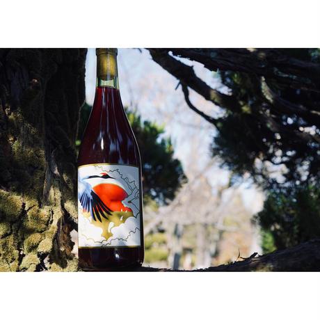「 Amphora Rosso 2019 」グレープリパブリック(山形県)