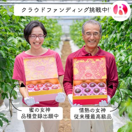 蜜の女神1kg  (8~10玉)