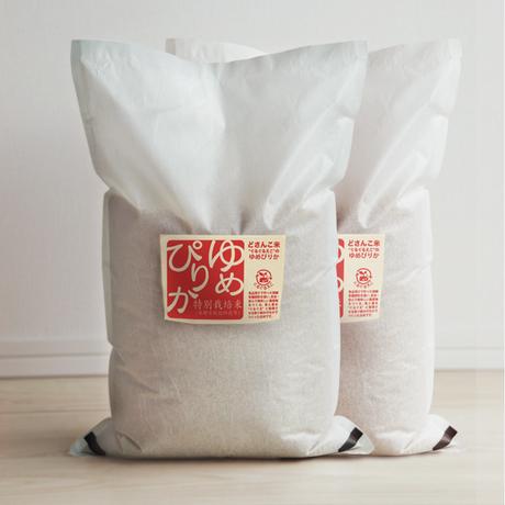 「平成30年北海道産」生産者限定・産直米「今摺米」特別栽培 北海道南幌産 ゆめぴりか 10kg(5kg×2) 白米