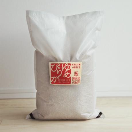 「平成30年北海道産」生産者限定・産直米「今摺米」特別栽培 北海道南幌産 ゆめぴりか 5kg  白米