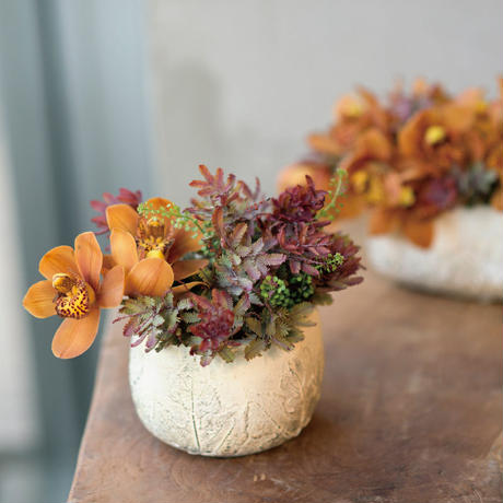 fall brown cement oval low pot L 666966