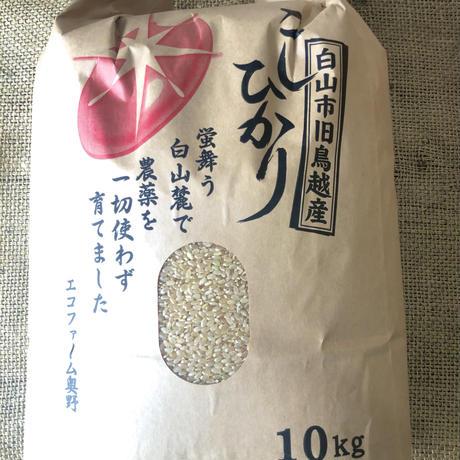 *師匠のお米*【鳥越エコファーム奥野】こしひかり10キロ(農薬不使用)
