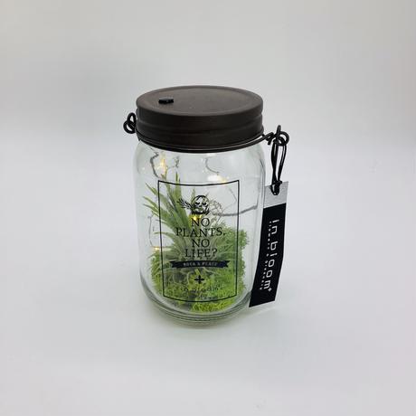 ボタニカルLEDボトル