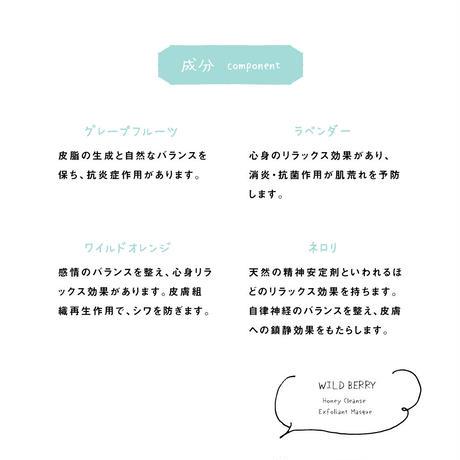 【 ワイルドクラフテッド オーガニックス 】 ワイルド H クレンズ エクスフォリアント マスク 100ml