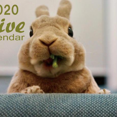 【送料無料】2020年『OLIVE』壁掛けカレンダー