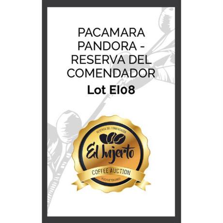 【※限定10セット/送料無料】100g グアテマラ エルインヘルト パカマラ パンドラ-レゼルバ コメンダドール