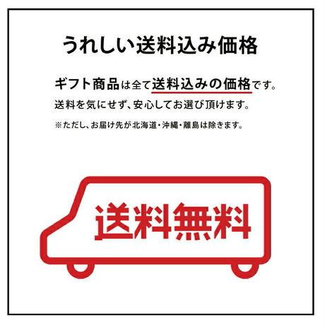 【送料無料】【プレミアムアイスコーヒー 2本セット】