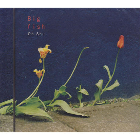 王舟 / Big fish / CD