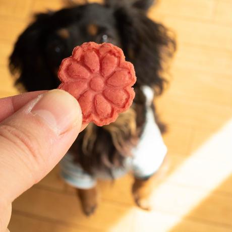 限定!米粉のカーネーションクッキー2袋【ネコポス利用お得2袋セット】