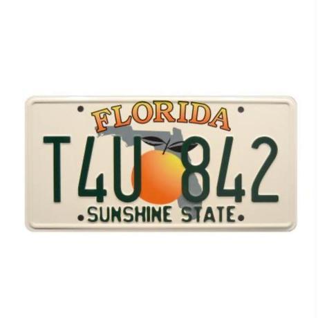 ブライアン・オコナー R34 ナンバープレート (T4U842) フロリダ州