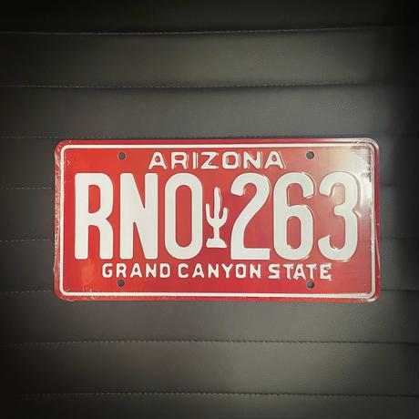 ブライアン・オコナー 1995 三菱 エクリプス ナンバープレート (RNO 263) アリゾナ州