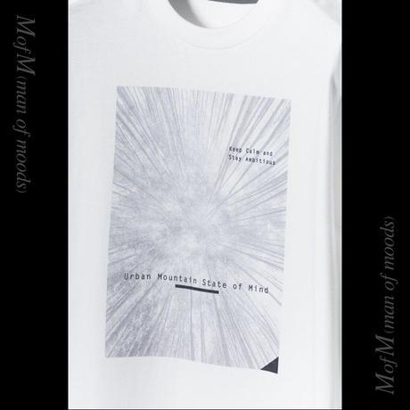 MofM(man of moods) オリジナルフォトグラフィックTシャツ Urban Mountain State of Mind(WHITE/NAVY/OLIVE)