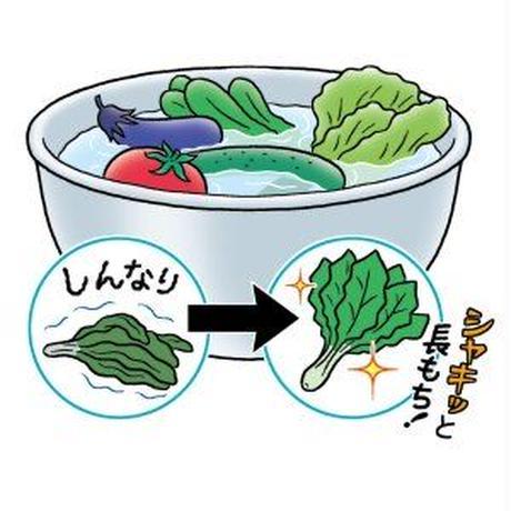 飲料用パイ化セラミックハーモニー2ピース(3リットル用)美味しい水生活、始めませんか?