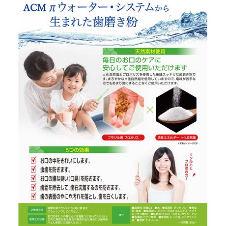 【定期購入3ヶ月ごと】[医薬部外品] プロポπソルト歯磨き 2本セット