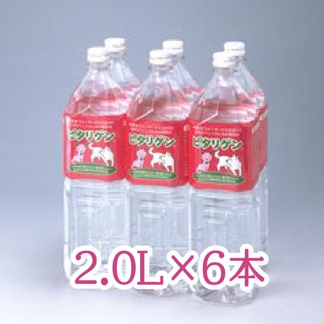 ペットの水・ピタリゲン(2.0L×6本)ペットにはペット用の水を !ピタリゲン、はじめよう。