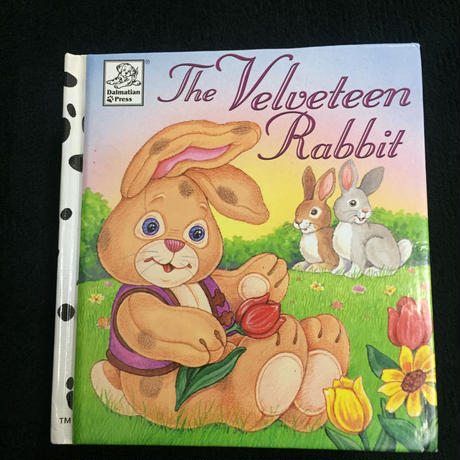 The Velveteen Rabit