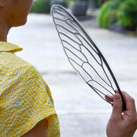 せみうちわ 透明 Cicada Fan clear