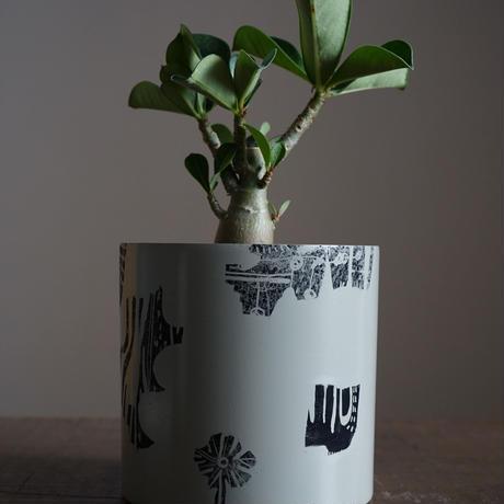 JUN KANEKO 鉢と植物・J