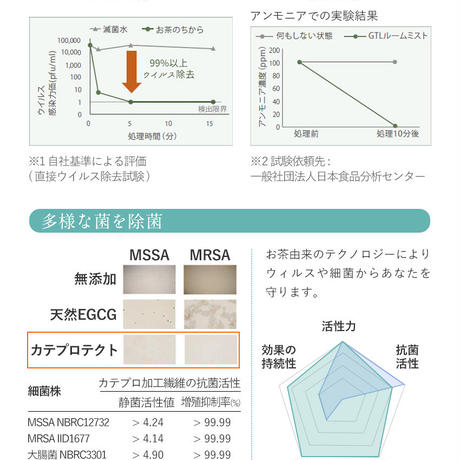【マスクスプレー】天然カテキン由来カテキンプロテクト配合
