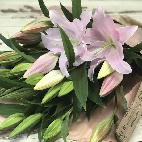 【Bunch of Lilies L】ユリ7本を束ねました!4つまで同梱包可能です!