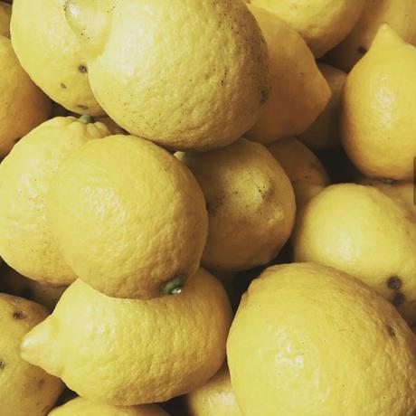 【レターパックで送れる】レモンのびん詰めセット
