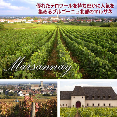 《お祝い》【ワインギフト】フランス ブルゴーニュ産の赤ワイン ドメーヌ・コイヨ「マルサネ・ラ・シャルム・オー・プレトル」2015年(11ZCOMA5C0-w)