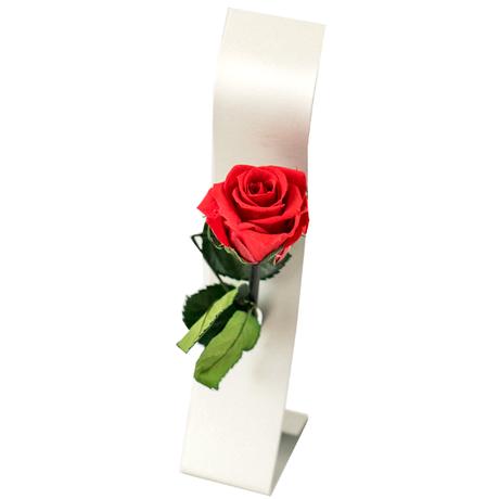 《新生活 プレゼント》【グラスとお花のギフト】ドイツのシュピゲラウ「オーセンティス」ワイングラスと一輪挿し付きプリザーブドフラワー《選べるお花:赤・黄色》(OG00-TWGSR)