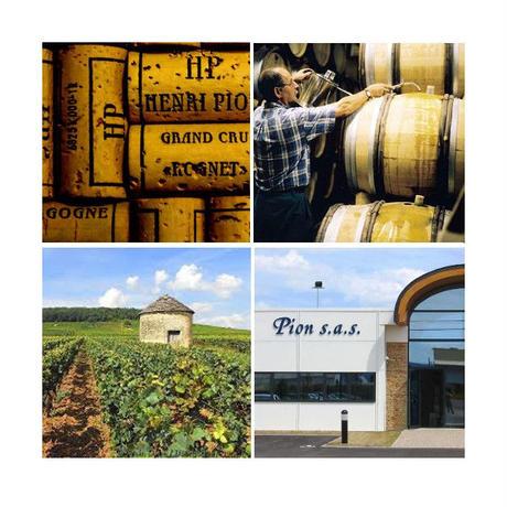 【ご自宅用】フランス ブルゴーニュ の赤ワイン 「ピノ・ノワール アンリ・ピオン」2015年 750ml(OG01-110429)