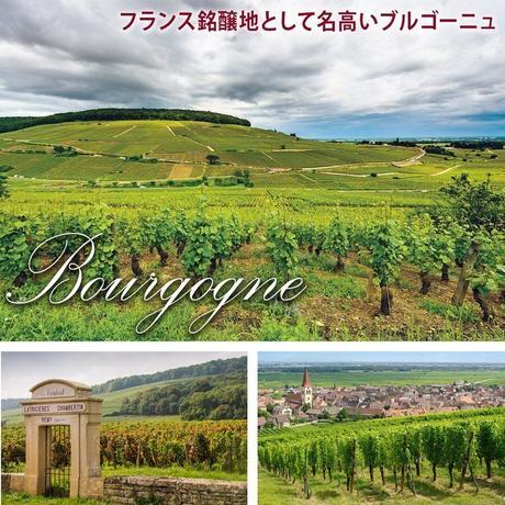 《期間限定》送料無料【ワインとスイーツのギフト】フランスの白ワイン「ロカレル・ブラン」(750ml)と「LES CACAOS」のゼリー×3個(OG15-FRWCJ3)