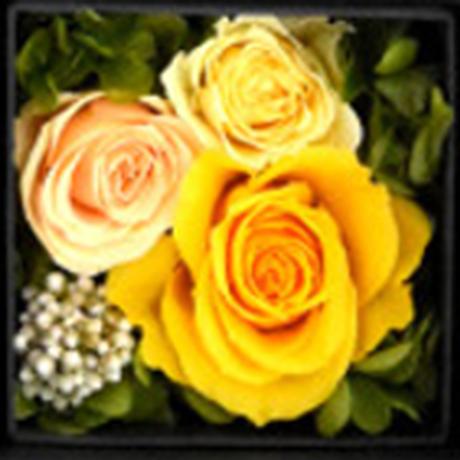 父の日 2021【ワインとお花のギフト】フランスのロゼワイン「ベロット・エ・レベロット・ロゼ」750mlとプリザーブドフラワーボックス《選べるお花:黄色・ピンク・赤》誕生日(OG53-BBRPRF)