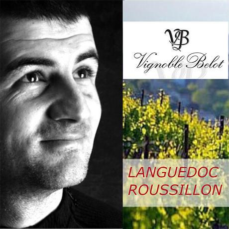 《期間限定》送料無料【赤ワインとスイーツのギフト】南フランスの赤ワイン「ルージュ・パッション」(750ml)と「LES CACAOS」のゼリー×3個(OG15-FBRCJ3)