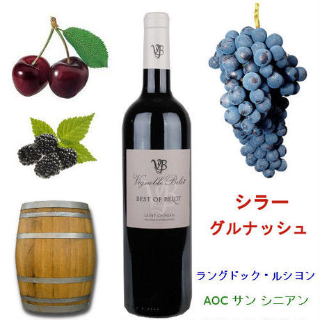 金賞受賞ワイン フランス 赤ワイン 飲み比べ 2本セット ラングドック・ルーション AOCサン・シニアン プレゼント ワインギフト ラッピング付 熨斗可能(OG95-108109)