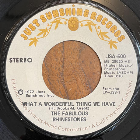 THE FABULOUS RHINESTONES / What A Wonderful Thing We Have