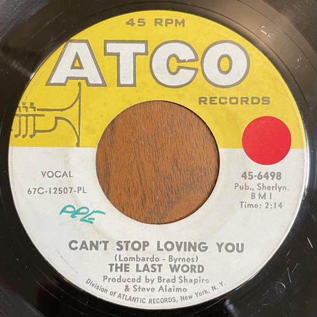 THE LAST WORD / Can't Stop Loving You