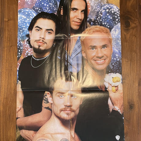 RED HOT CHILI PEPPERS /My Friends