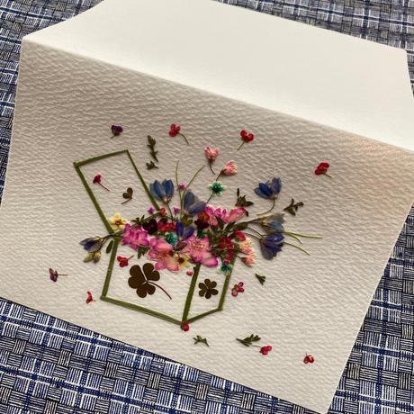 BOX OF FLOWERS(2つ折り/封筒付)