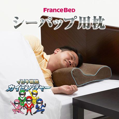 【購入】シーパップ用枕(360044000)