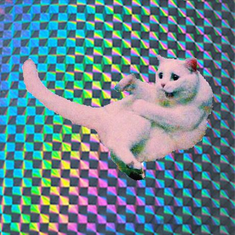 猫ラップステッカー(新)