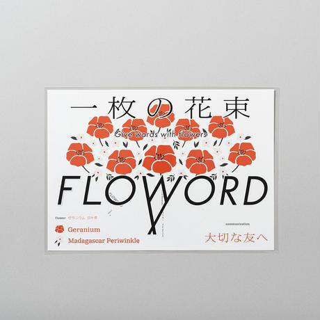Geranium ゼラニウム / Madagascarperiwinkie 日々草