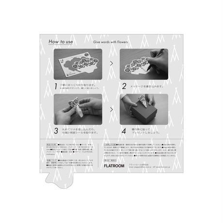 Pittosporm ピットスポルム / Pincushion ピンクッション(mini)