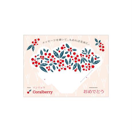 Coralberry マンリョウ(mini)