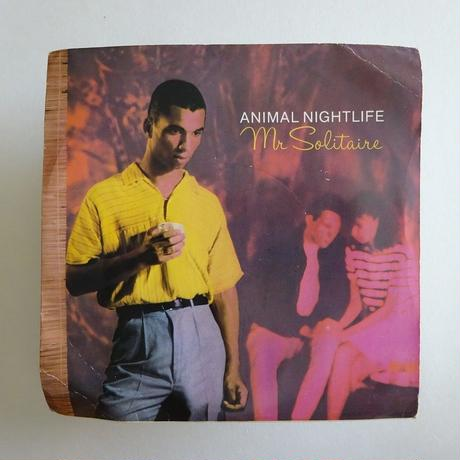 Animal Nightlife / Mr Solitaire