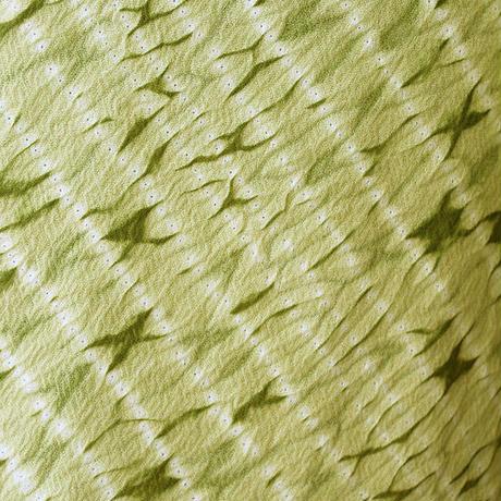 【袷】若芽色×抹茶色縫い絞り小紋