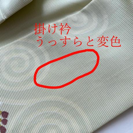 【夏・絽】志ま亀製 夏虫色・沢瀉に渦巻き絽の小紋