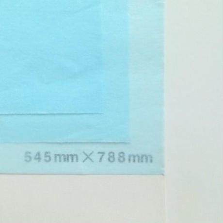 ライトブルー 14g 545mm × 394mm  100枚
