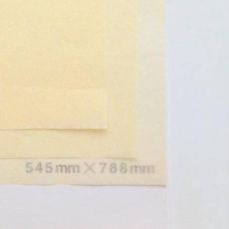 アイボリー 14g 545mm × 788mm 50枚