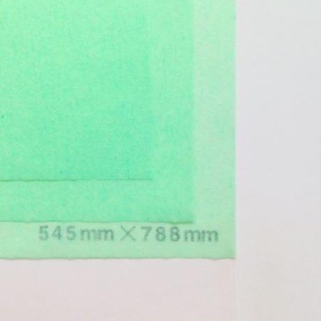 グリーン 14g   545mm × 394mm  100枚