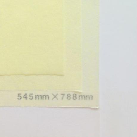 クリーム 14g  272mm × 197mm  800枚